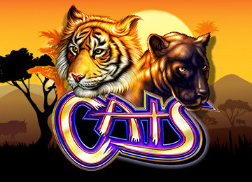 Discover all the advantages of Cats Slot Machine by IGT